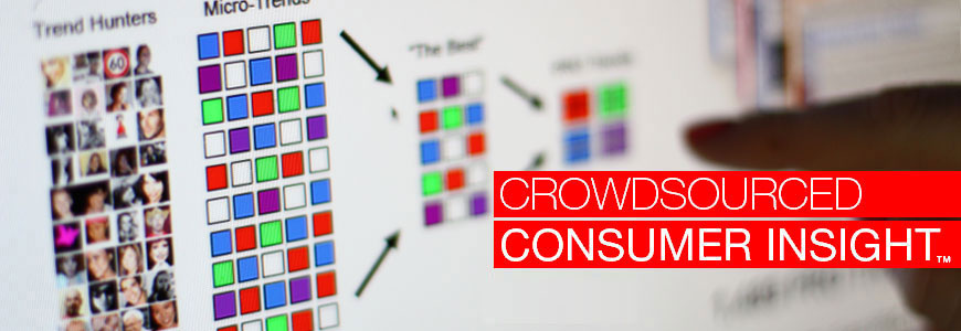 Crowdsourced Consumer Insight