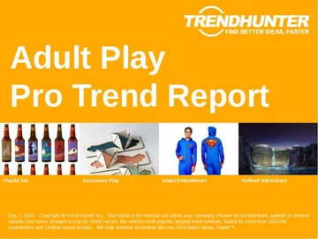 Adult Play Trend Report and Adult Play Market Research