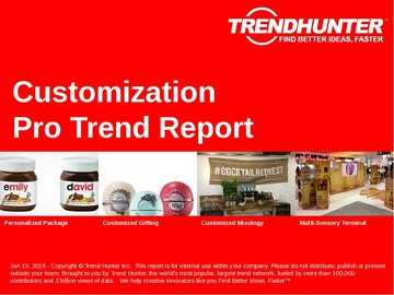 Customization Trend Report and Customization Market Research