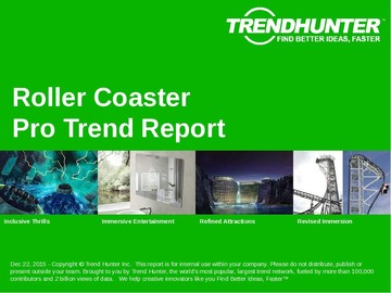 Roller Coaster Trend Report and Roller Coaster Market Research
