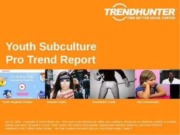 Youth Subculture Trend Report and Youth Subculture Market Research