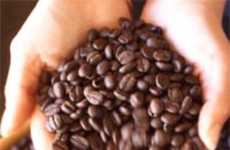 Coffee: A future female Viagra?