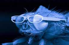 Housefly Gets Glasses Made With Lasers
