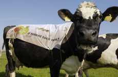 First Sheepvertising now Cowvertising
