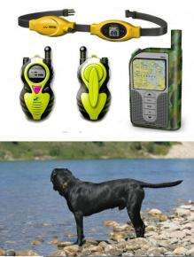 Remote Control Your Cat / Dog / Horse / Kid?
