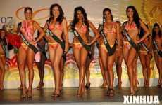 International Beauties Promote Environment