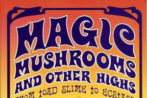 Dutch to Ban Sale of Magic Mushrooms