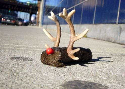 Street Poop Art