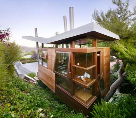 Banyan Drive Tree house