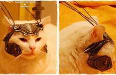 Medieval Feline Attire