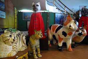 The Cat Museum in Malaysia is Specially for Cat Lovers