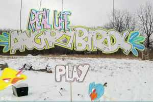 The Popular Bird-Launching App Becomes a Snowy Reality