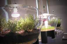 Illuminating Plant Habitats - Pendant Glass Light Terrariums Embody Dual-Function Design