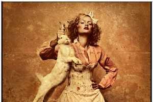 The Twisted Katarzyna Widmanska Alice in Wonderland Spread