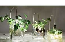 From Light Bulb Vases to Solar-Powered Plant Pots