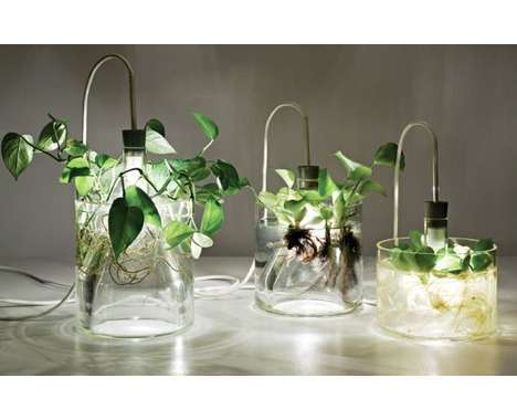 14 Lush Illuminating Planters - From Light Bulb Vases to Solar-Powered Plant Pots