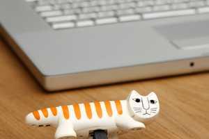 The Necono Digital Camera has Funky Feline Features
