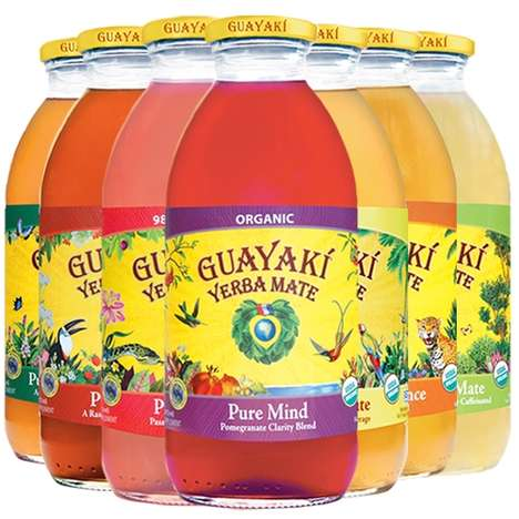 Rainforest Energy Drinks - Guayaki Yerba Mate Has a Unique Social Business Model