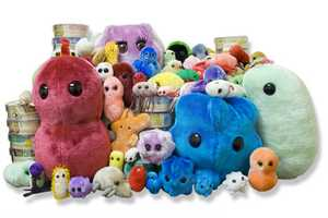 The Drew Oliver GIANTmicrobes Collection is Educational
