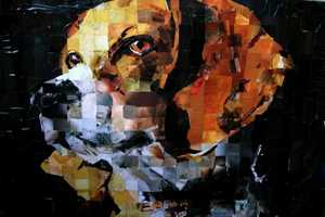 Samuel Price's Pet Portraits are Made Using Recycled Magazines