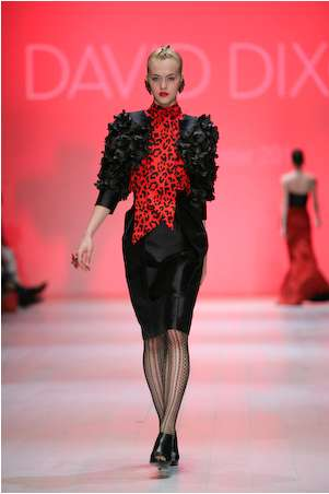 David Dixon 2011 Fall/Winter