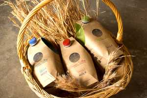 Organic Valley Milk Packaging Embraces Total Sustainability