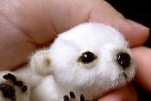 Tatiana Scalozub Offers an Etsy Pattern for Making Miniature Polar Bears