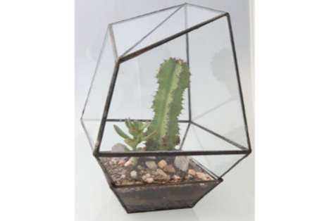 Assembly New York Geometric Terrariums