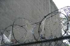 Razor Wire Doilies
