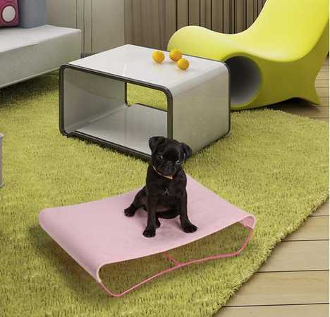 Modern Pet Furniture To Make You Jealous