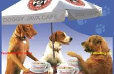 Canine Coffee