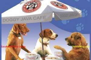 Doggy Java Cafe