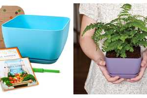 The Simple Garden Starter Kit Boasts Containers that Promote Healthy Foliage