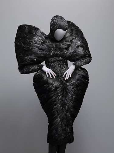 Fully Feathered Frocks - Alexander McQueen