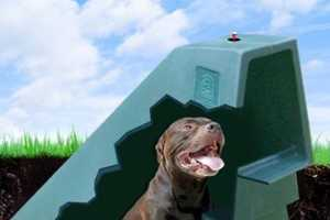 Miller Pet Products' DogEden Doghouse Naturally Keeps Dogs Cool
