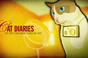 Friskies' Cat Diaries Video Portrays the World from the Eyes of Pets