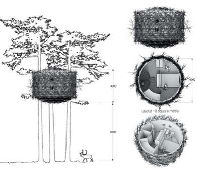 Tree Hotel 6