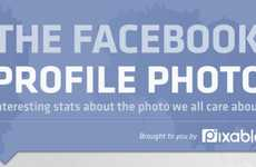 Picture-Perfect Infographics - The Big Picture of Facebook Profile Photos Examines Your Photo Love