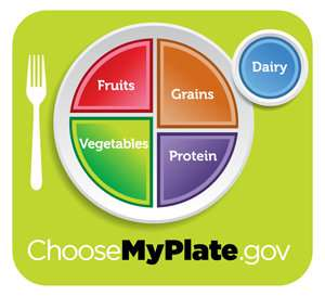 Food Pyramid MyPlate