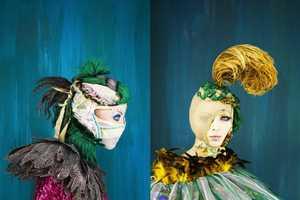 The Madame Peripetie Bird Series is Amazingly Avian