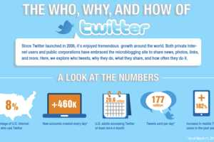 This Twitter Infographic Gages The Who, Why and How of Twitter