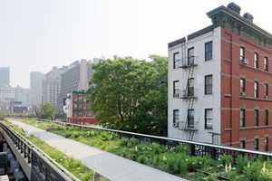 The Diller Scofidio & Renfro 'High Line' Brings Country into the City