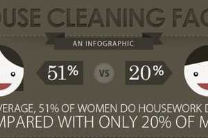 This House Cleaning Facts Infographic is Informative and Hilarious