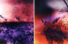 Intoxicatingly Tinted Naturetography