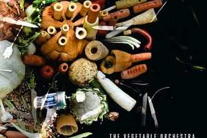 Onionoise by the Vegetable Orchestra Studies Another Sense