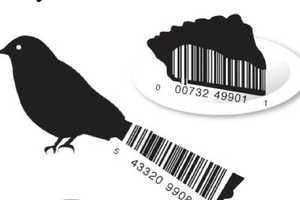 Vanity Barcodes Makes Bland Boxes Brilliant