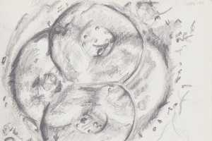 The Amiable Humanist Creates Stunning Scientific Sketches
