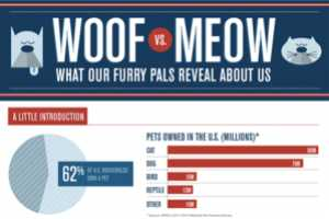 The 'Woof vs. Meow' Charts Dissect People's Pet Choices