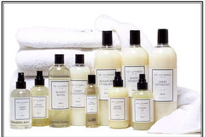 The Laundress Saves Delicates