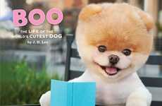 The Life of the World's Cutest Dog Chronicles Boo's Life